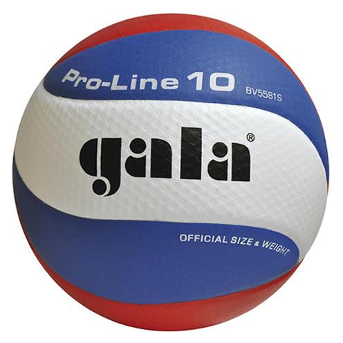 Volejbalový míč Gala Pro Line BV 5581 S