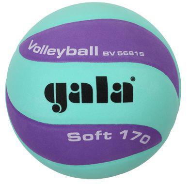 Volejbalový míč Gala Soft BV5681SCF vel.5