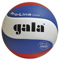 Volejbalový míč Gala Official Profi BV 5591 S