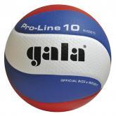 Volejbalový míč Gala Pro Line BV 5581 S vel.5