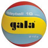 Volejbalový míč Gala Training BV5551S