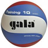 Volejbalový míč Gala Training BV 5561 S vel.5