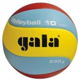Volejbalový míč Gala Training BV 5651S vel.5