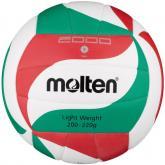 Volejbalový míč Molten V5M2000-L
