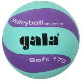 Volejbalový míč Gala Soft BV5681SCF