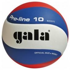 Volejbalový míč Gala Pro Line 5121 S