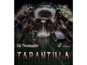 Potah Dr. Neubauer Tarantula